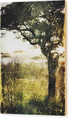 Savana Wood Print by Andrea Barbieri