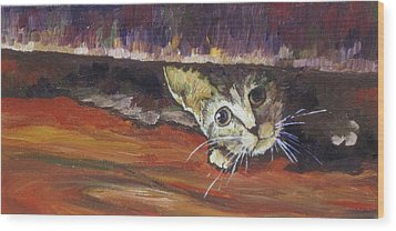 Scaredy Cat Wood Print by Sandy Tracey
