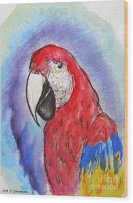 Scarlet Macaw Wood Print by M C Sturman