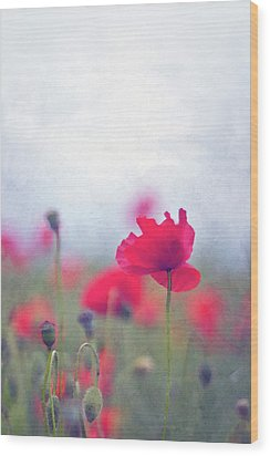 Scarlet Poppies In Painterly Style Wood Print by Image by Catherine MacBride