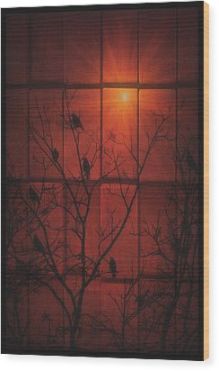Scarlet Silhouette Wood Print by Tom York Images