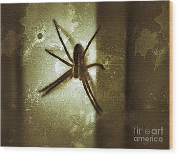 Scary Spider Wood Print by Christy Bruna