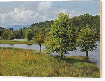 Scenic Lake With Mountains Wood Print by Susan Leggett