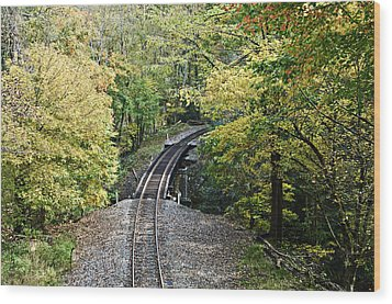 Scenic Railway Tracks Wood Print by Susan Leggett