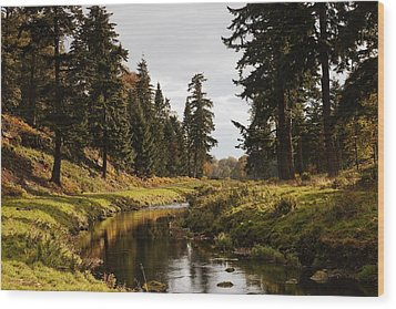 Scenic River, Northumberland, England Wood Print by John Short