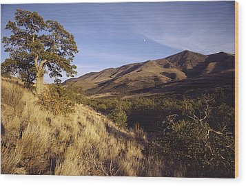 Scenic View Of The Yakima Valley Wood Print by Sisse Brimberg