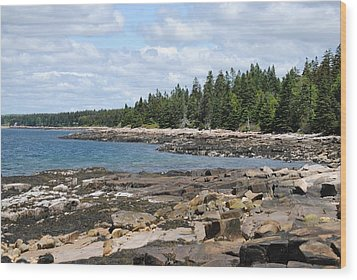 Schoodic Peninsula  Wood Print by Steven Scott