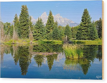 Schwabacher Landing Still Waters Wood Print by Greg Norrell