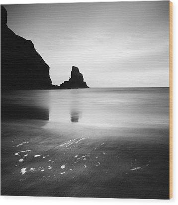 Scotland Talisker Bay Wood Print by Nina Papiorek