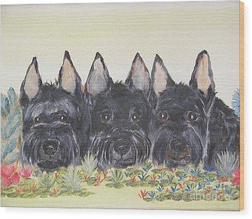 Scottish Gardeners Wood Print by Rachel Carmichael