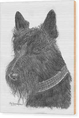Wood Print featuring the drawing Scottish Terrier by Jim Hubbard