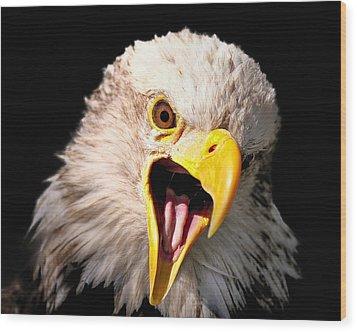 Screaming Eagle II Black Wood Print