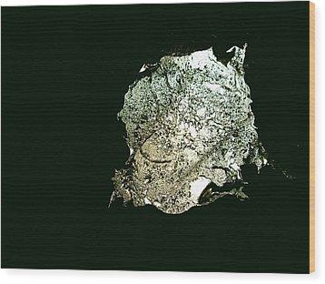 Sculpture Splash Wood Print by Robert Cunningham