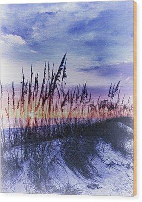 Se Oats 2 Wood Print by Skip Nall