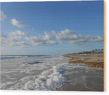 Sea And Sky Wood Print by Sheila Silverstein