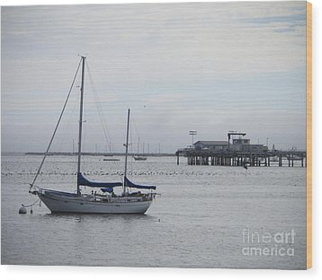 Wood Print featuring the photograph Sea Breeze by Leslie Hunziker