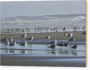 Sea Gulls And Breakers Wood Print by Pamela Patch