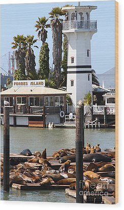 Sea Lions At Pier 39 San Francisco California . 7d14296 Wood Print by Wingsdomain Art and Photography