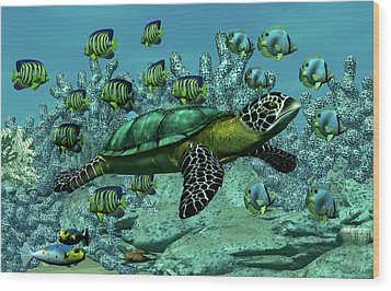 Sea Turtle Wood Print by Walter Colvin