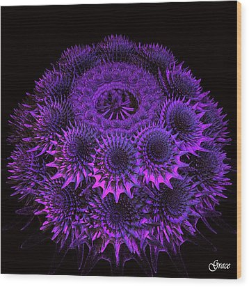 Sea Urchin Wood Print by Julie Grace