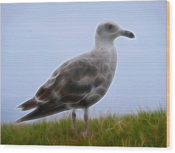 Seagull Abstract Wood Print by Cindy Wright