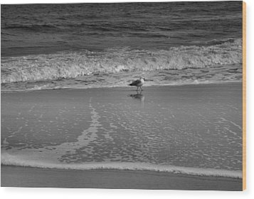 Seagull And Surf Wood Print by Steven Ainsworth