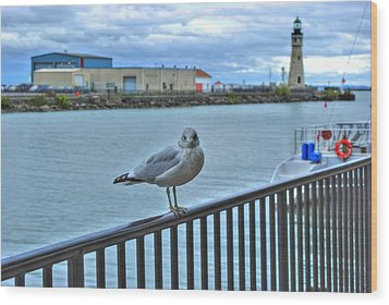 Wood Print featuring the photograph Seagull At Lighthouse by Michael Frank Jr