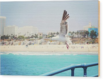 Seagull Flying Wood Print by Libertad Leal Photography