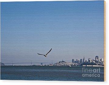 Seagull Flying Over San Francisco Bay Wood Print by David Buffington