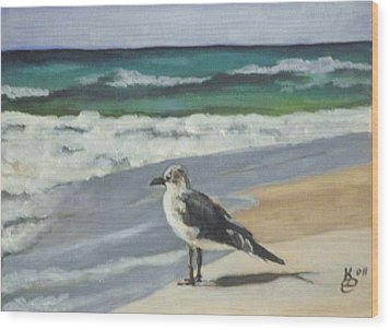 Seagull Wood Print by Kim Selig