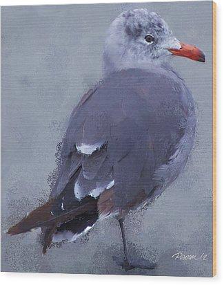 Seagull Portrait I Wood Print