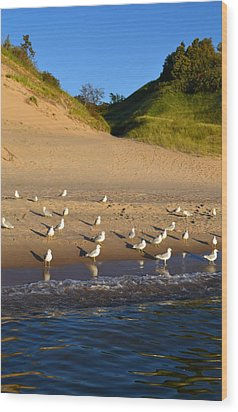 Seagulls At The Bowl Wood Print by Michelle Calkins