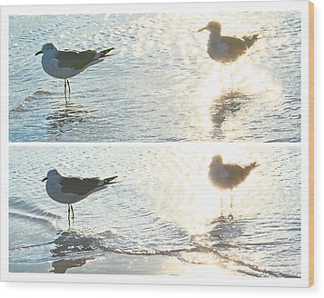 Seagulls In A Shimmer Two Views By Olivia Novak Wood Print by Olivia Novak