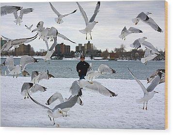 Seagulls In Flight Wood Print by Gordon Dean II
