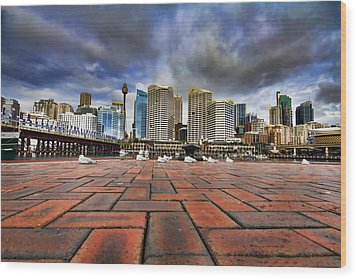 Seagull's Perspective Wood Print by Douglas Barnard