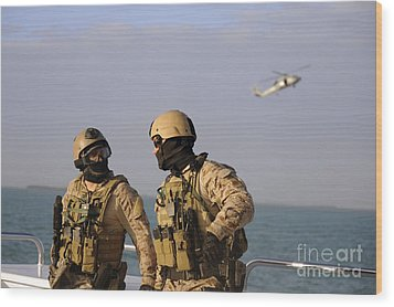 Seals Aboard A Rigid-hull Inflatable Wood Print by Stocktrek Images