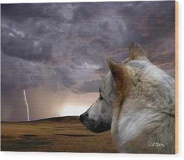 Searching For Home Wood Print by Bill Stephens