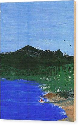 Seaside Wood Print by Harry Richards