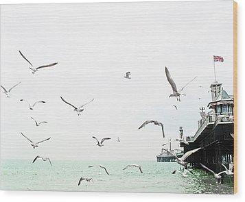 Seaside Seagulls Wood Print by Richard Newstead