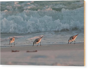 Wood Print featuring the photograph Seaside Trio by Charles Warren