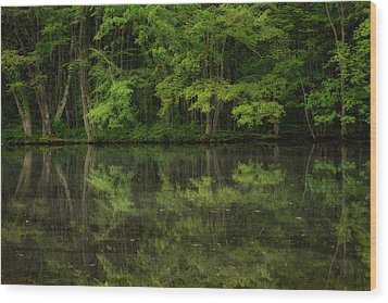 Season Of Green Wood Print by Karol Livote