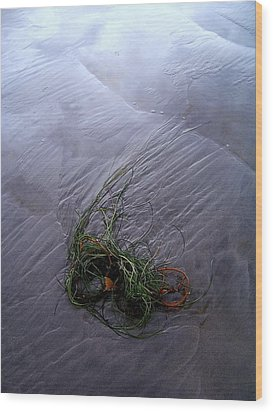 Wood Print featuring the photograph Seaweed Delivery by Peter Mooyman