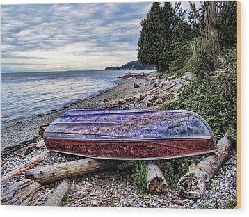 Seaworthy Wood Print by Diana Cox