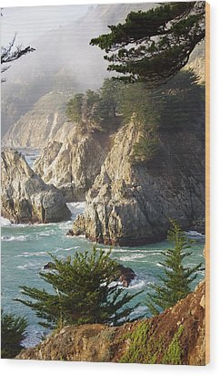 Secluded Big Sur Cove 1 Wood Print by Jeff Lowe