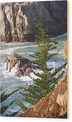 Secluded Big Sur Cove 2 Wood Print by Jeff Lowe