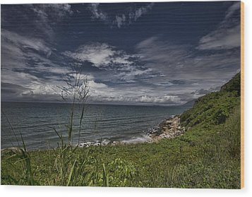 Secluded Cove Wood Print by Douglas Barnard