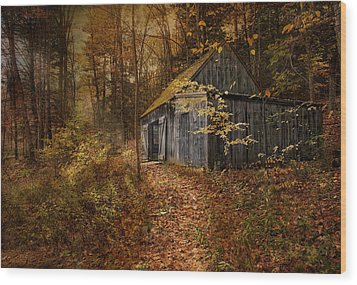 Secluded Wood Print by Robin-Lee Vieira