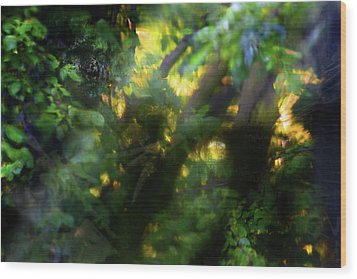 Wood Print featuring the photograph Secret Forest by Richard Piper