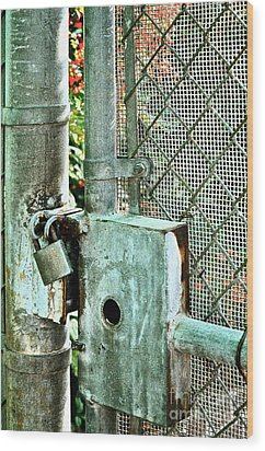 Secure Wood Print by Gwyn Newcombe