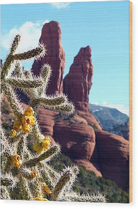 Sedona Flowering Cholla Wood Print by Cindy Wright